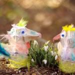 Munarestist meisterdamine: linnukeste kevad