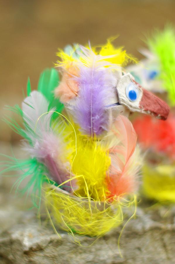 linnuke1