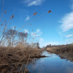 Kanuuga Vääna jõel