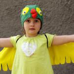 Papagoi kostüüm – kuidas see kõige esimene valmis