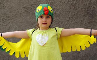 papagoi kostüüm, kostüümide müük