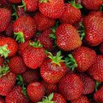Kuidas ma uut maasikamaad tegin