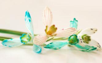 lillede värvimine