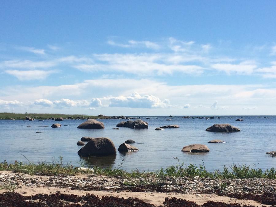 Täna käisin rannas ja tegin  natuke videot ikka ka. Vaata Instast järele!