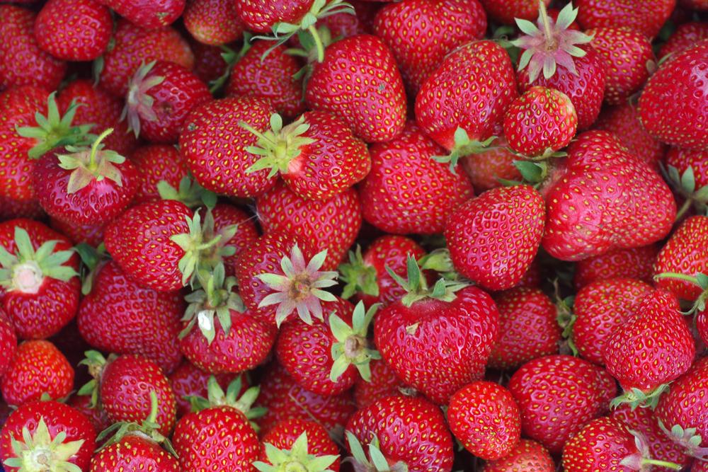 strowberries4v