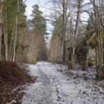 Rongiga matkama – Ohtu mõis, kalmistu ja lõkkekoht