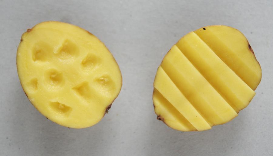 kartulitrükk, lihavõtted