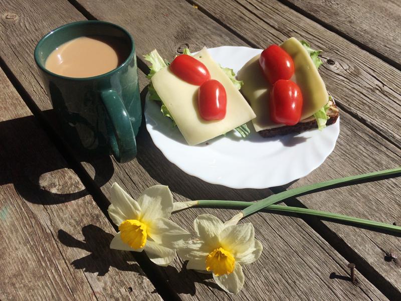 Hommikusöök õues. Värske salatiga.