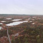 Nädalavahetus lastega metsas: Mukri, Vanapagana metsamaja ja Saarjõe matkarada