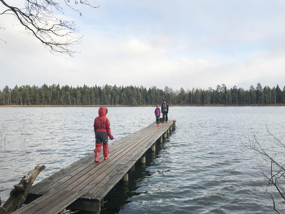 Järveotsa järv