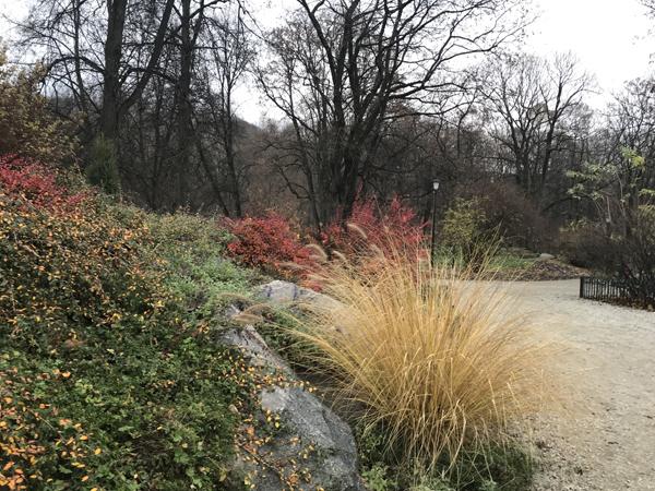 Bernardine Garden vilnius