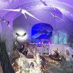 Helsingi loodusmuuseum Luomus