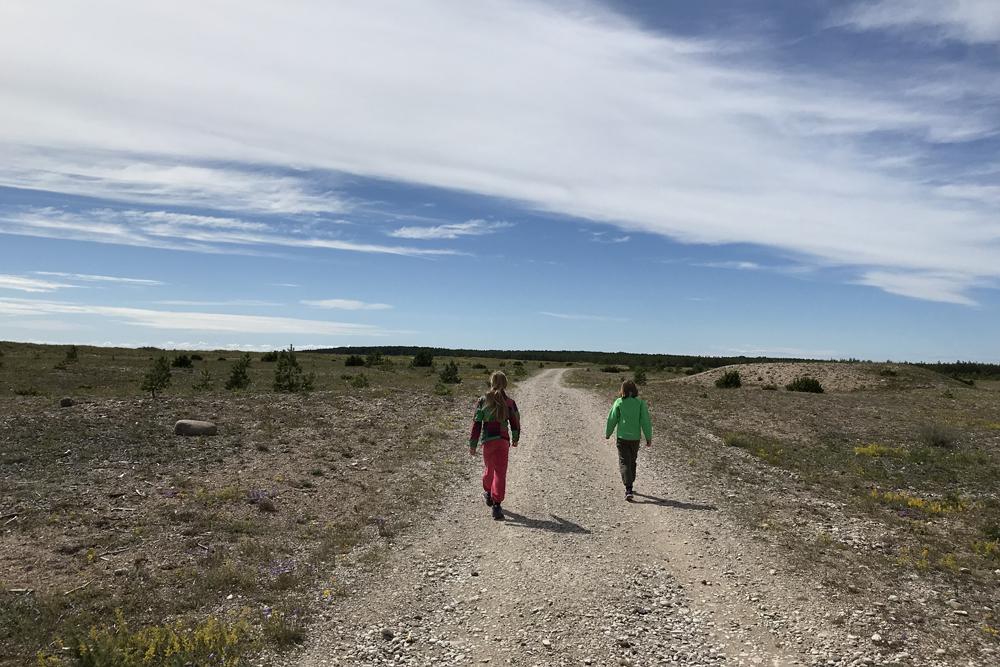 Harilaiu matkarada Saaremaa vilsandi looduskaitseala