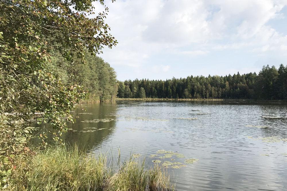 Linajärv Kõrvemaa