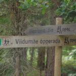 Mida teha Saaremaal – Viidumäe
