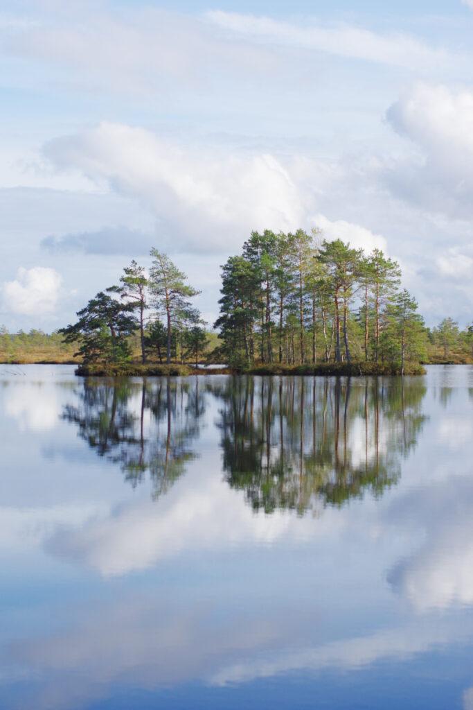 Väike-Loosalu järv