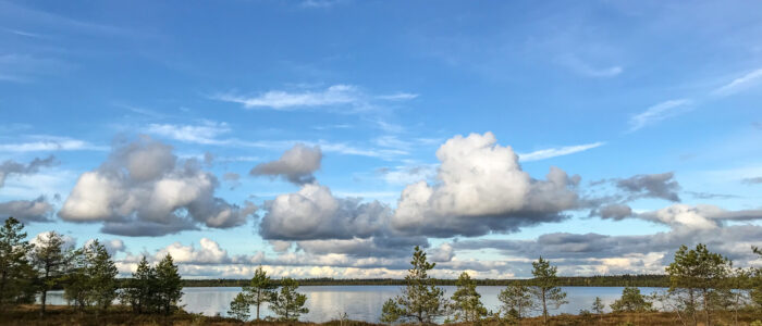 Loosalu raba Loosalu järv