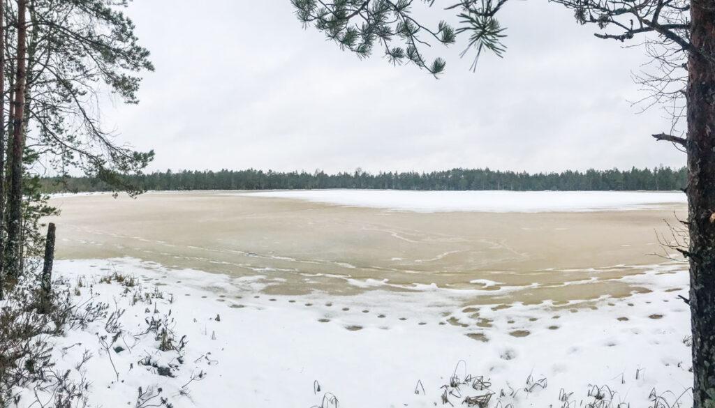 Kõnnu järv raba seli