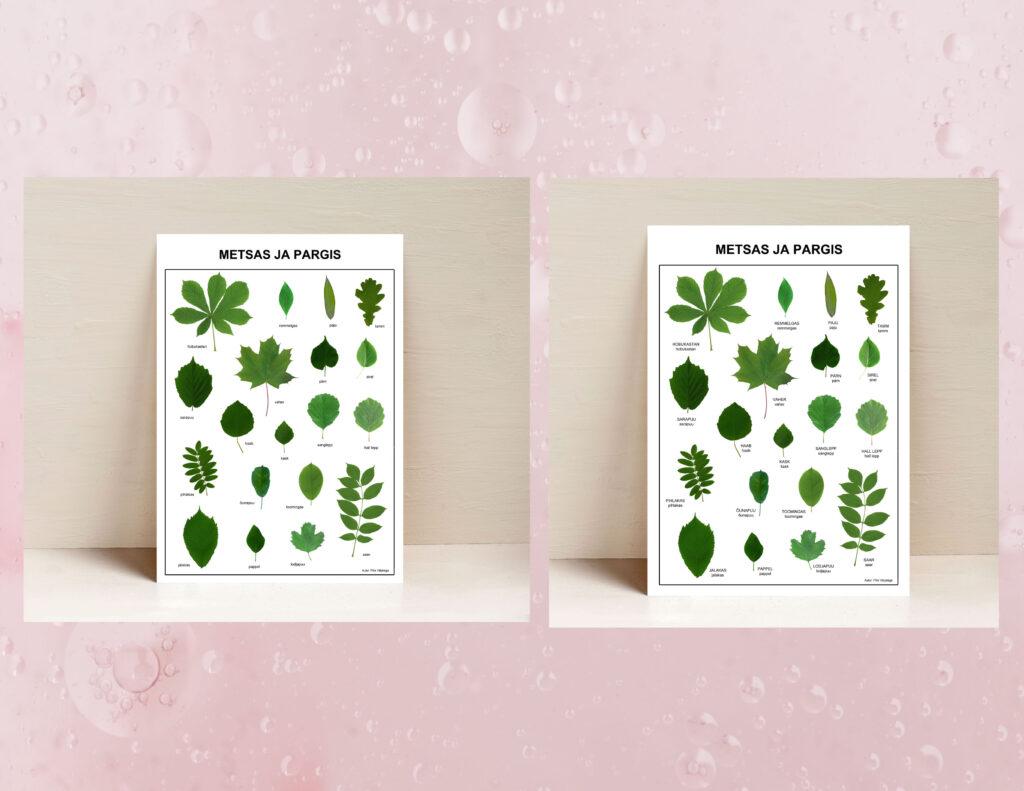 poster metsas ja aias lehed leheposter